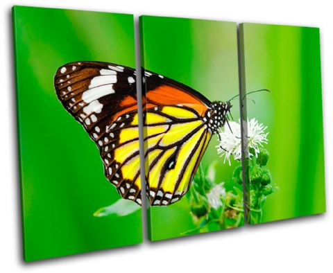 Butterfly Flowers Animals - 13-1478(00B)-TR32-LO